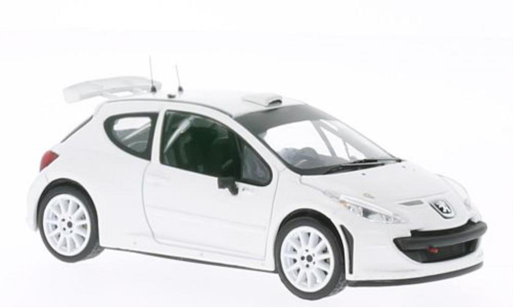 Peugeot 207 S2000 1/43 IXO Rally Spec matt-blanche 2011 miniature