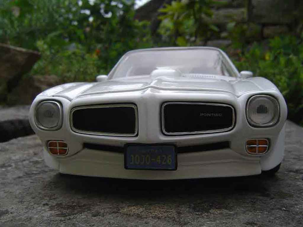 Pontiac Firebird 1973 1/18 Ertl trans am miniature