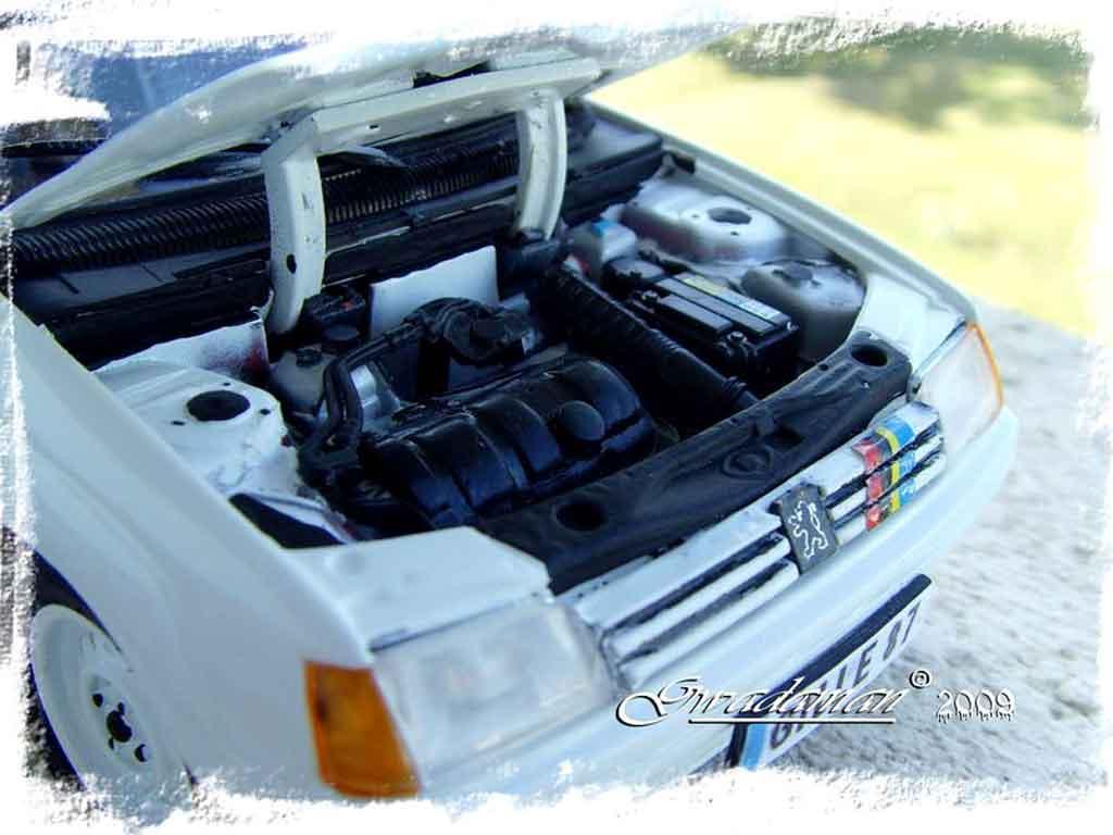 Peugeot 205 Rallye 1/18 Solido base gti