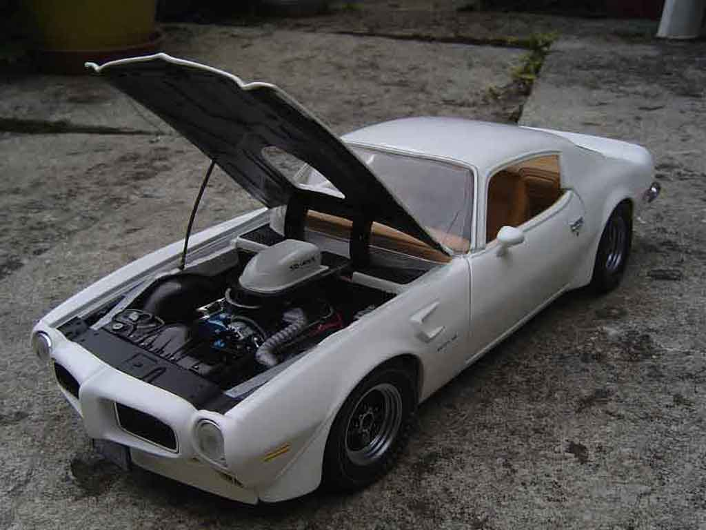 pontiac firebird 1973 trans am ertl modellauto 1 18 kaufen verkauf modellauto online. Black Bedroom Furniture Sets. Home Design Ideas
