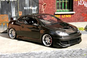 Peugeot tuning 206 CC carbon covered