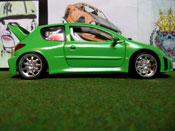 Peugeot tuning 206 WRC mela verde